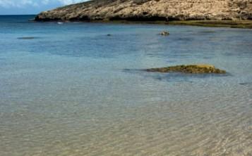 Playa-jobos