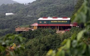 """La Hacienda Tres Ángeles brinda un """"tour"""" rodeado por 100 cuerdas de café. (Archivo de GFR Media)"""