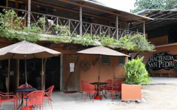 El café Hacienda San Pedro es dulce, suave, achocolatado, poco cítrico y con notas de especias, según lo describe su propietario.  (Tony Zayas)