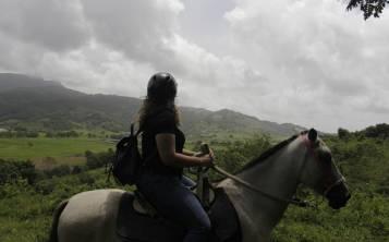Los caballos de la Hacienda 8A siempre están listos para ofrecer a sus visitantes un paseo a través de una enorme finca. (Pablo Venes)
