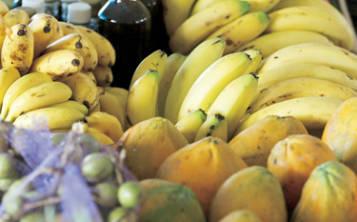 ASORE, Agricultura y la Cámara de Representantes llegaron a un acuerdo que busca fomentar que los restaurantes en el País compren más ingredientes locales. (Foto: Archivo)