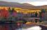 El 99% del estado de Maine son bosques. (Shutterstock.com)