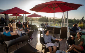Sky Vine Rooftop Bar ofrece platillos estadounidenses contemporáneos junto con extraordinarias vistas. (Josh Haner/The New York Times)